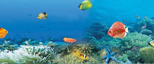 南宁海底世界